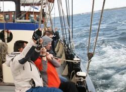 Sailing in the Baltic